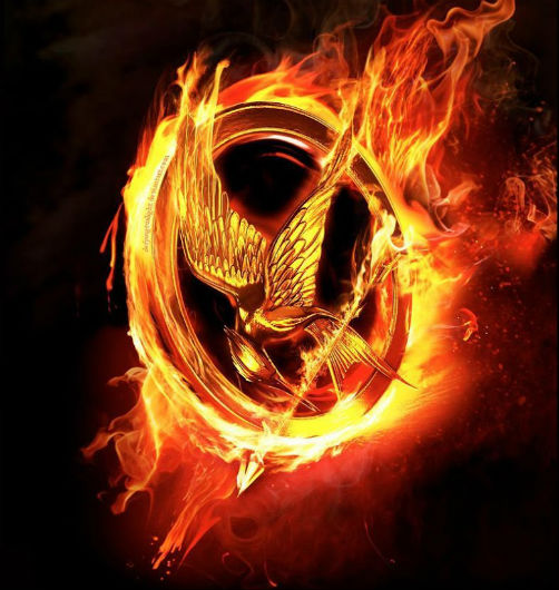 The Hunger Games Catching Fire (4)
