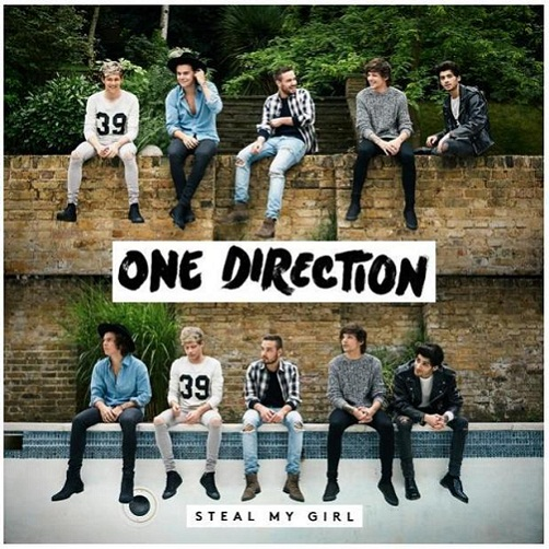 one direction steal my girl(2)